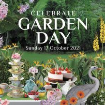 The Most Instagrammable Spots to Celebrate Garden Day SA